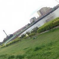 nakagawa_dote.jpg