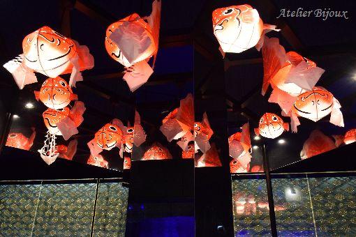 023-すみだ水族館江戸リウム