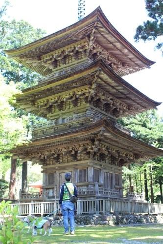 temple-20150426-04.jpg