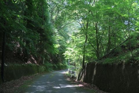 16足尾への山道