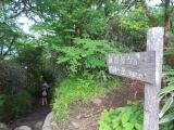 明神ヶ岳へ