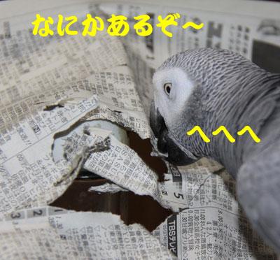 6_なんかある