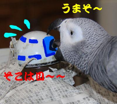 9_うまそ