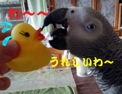 3_かんげき