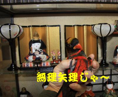 5_雛祭りピンナ