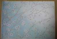 sakura-bluecc.jpg