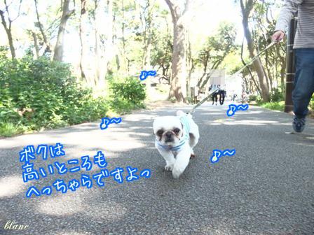 城ヶ崎(1)
