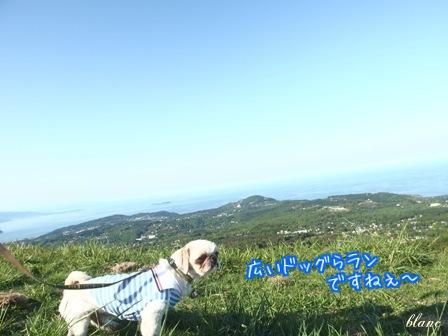 大室山(4)