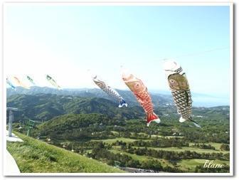 大室山(6)