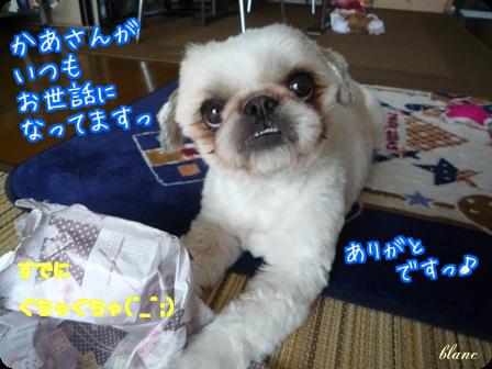 ブラン(2)