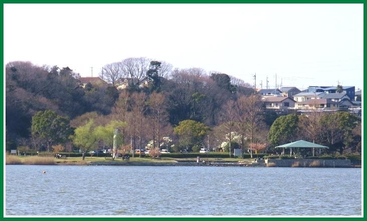 佐鳴湖 西岸 2015 3 17 008 710