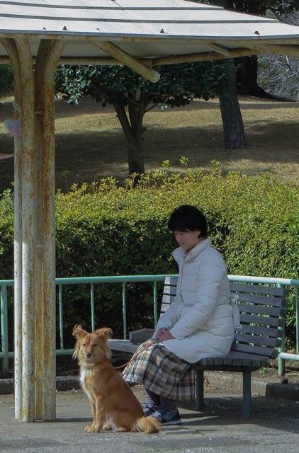 IMG_0014_2015022209541943c.jpg
