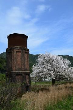 厳木駅桜模様2015(4)