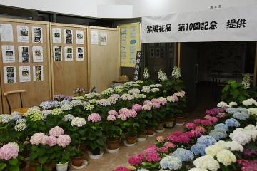 大川野駅201505(2)