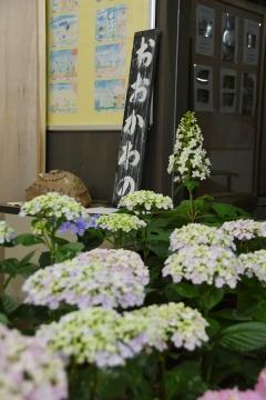 大川野駅201505(6)