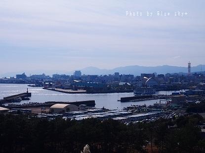 多賀山ドルフィン