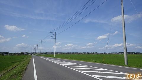 IMGP4614.jpg