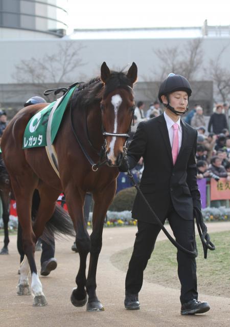 2015 きさらぎ賞 レガッタ1