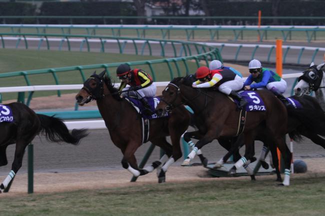 2014 有馬 ラキシス1
