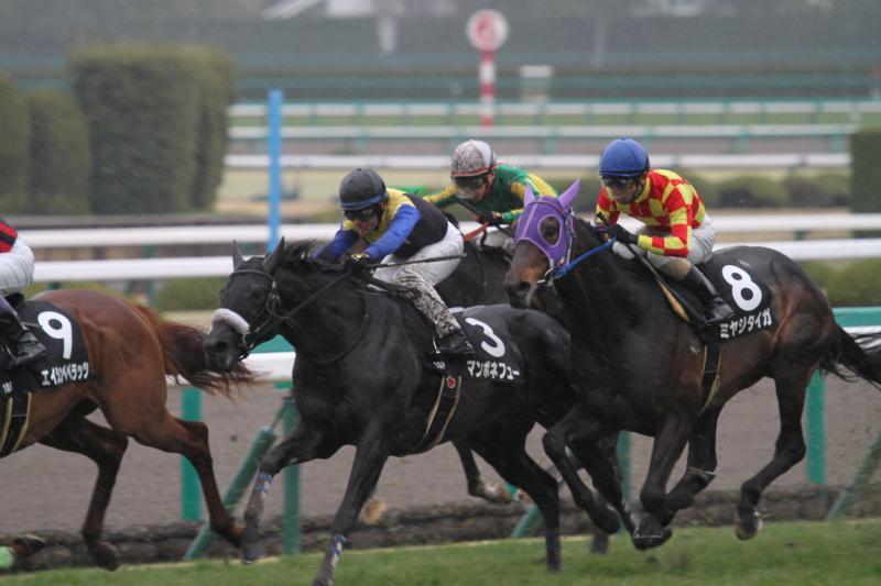 2015 サトノアラジン武庫川S