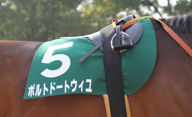 2015きさらぎ賞 ポルトドートウィユ7