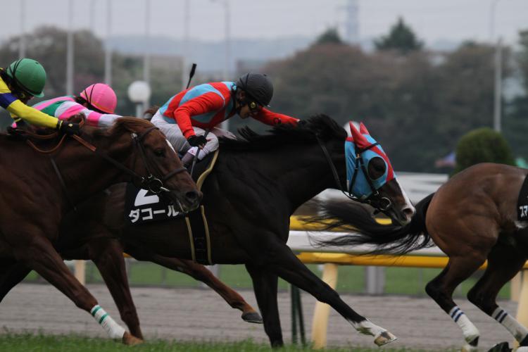 2012 ダコール府中S3