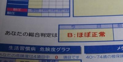 hoboseizyo1.jpg
