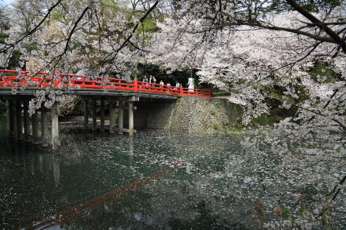 2015-04-12 takaoka kojoukouenn (3)