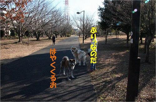 s-150308-8.jpg