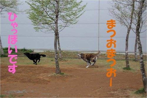 s-150513-1.jpg