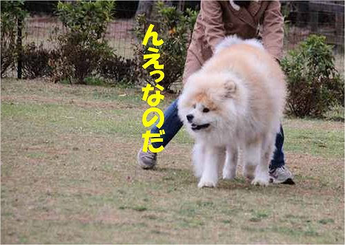 s-150601-16.jpg