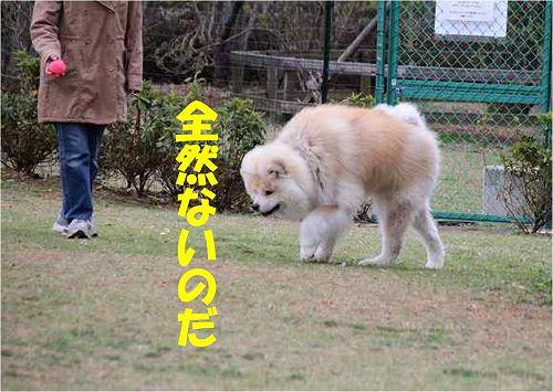 s-150601-9.jpg
