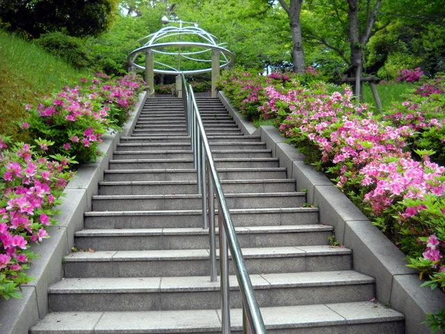 ツツジの咲く階段