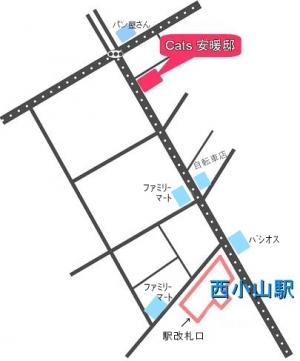 MAPkkk[2]