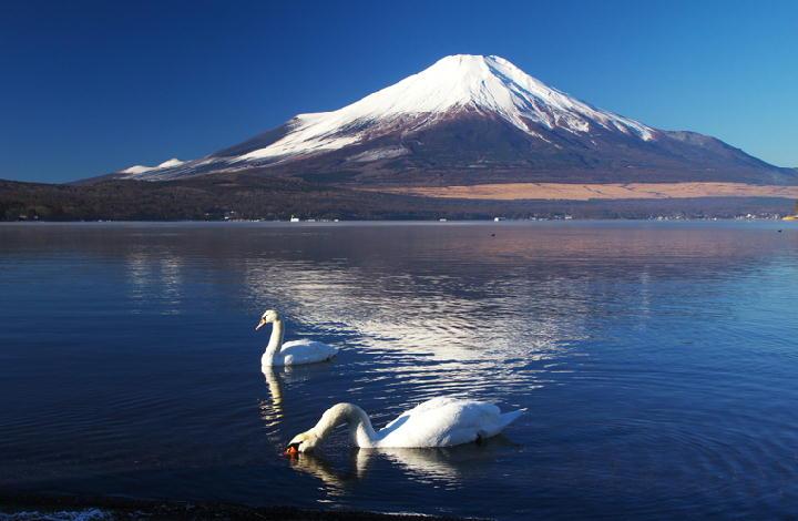 山中湖-504-1