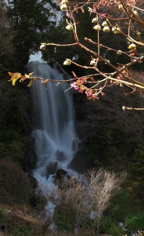 朝日滝-480