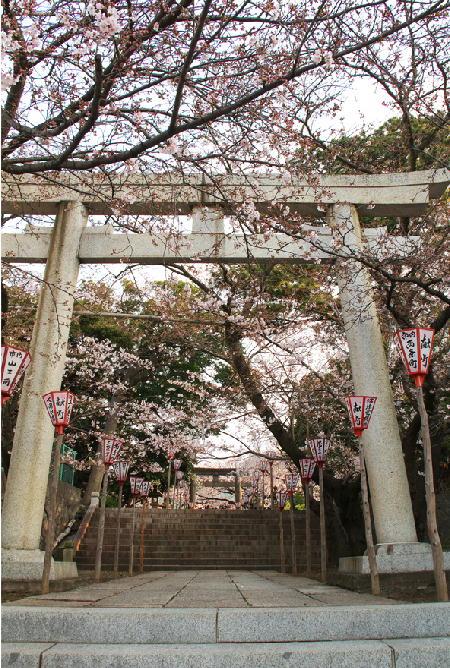 日枝神社-302