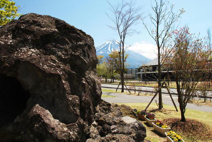 溶岩樹型-466