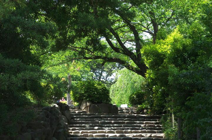 小田原城-836
