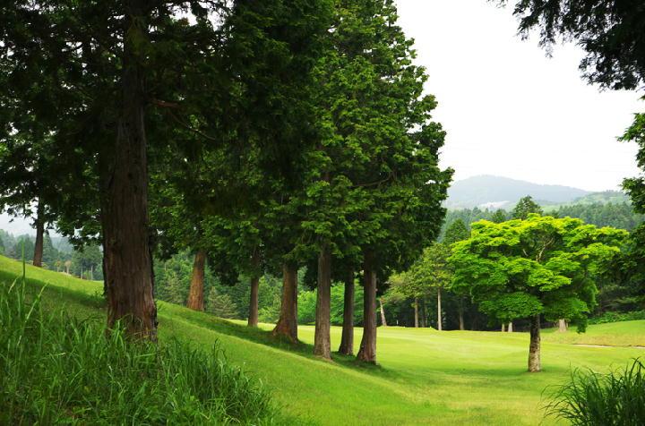 ゴルフ場-366