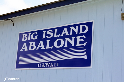 Big Island Abalone Corporation