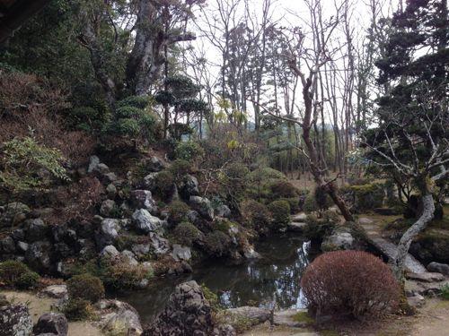 IMG_6845suzukitei.jpg