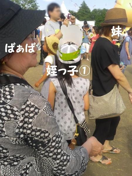 20150531 (11)