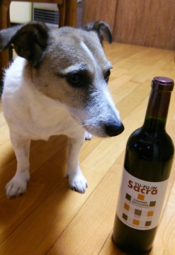 湯布院ワイン
