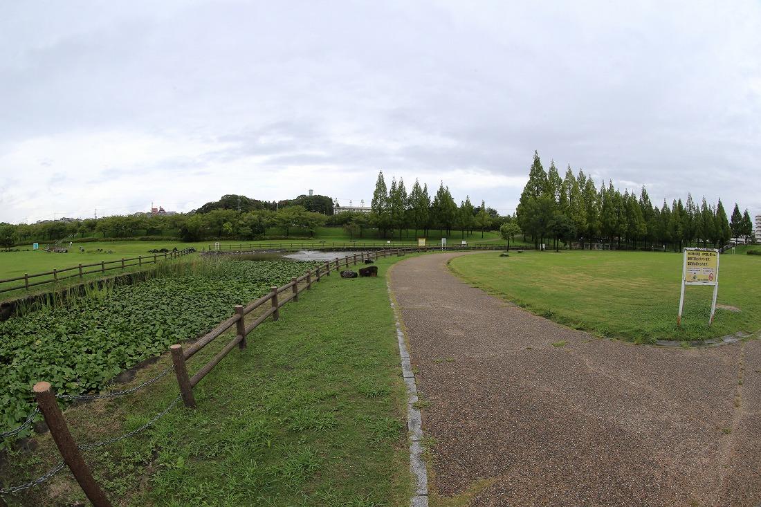 neyagawa 3