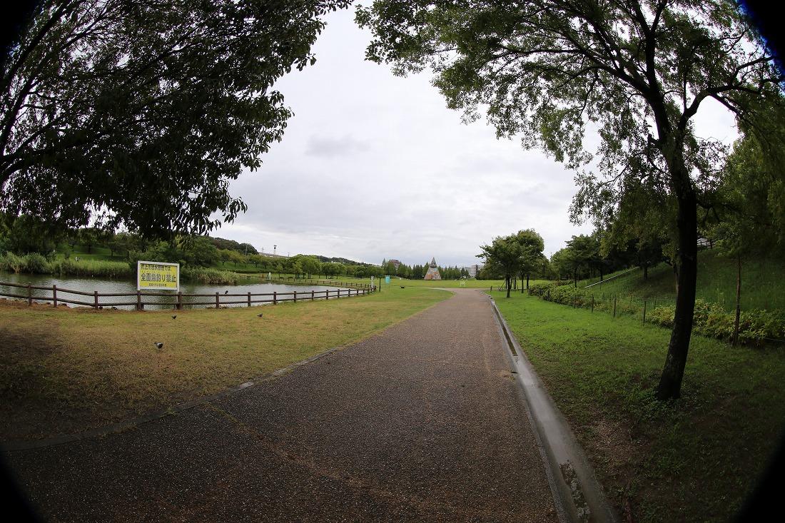 neyagawa 6