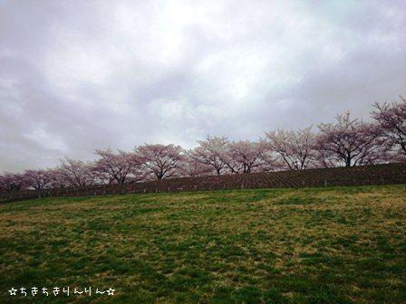 赤羽堤緑地