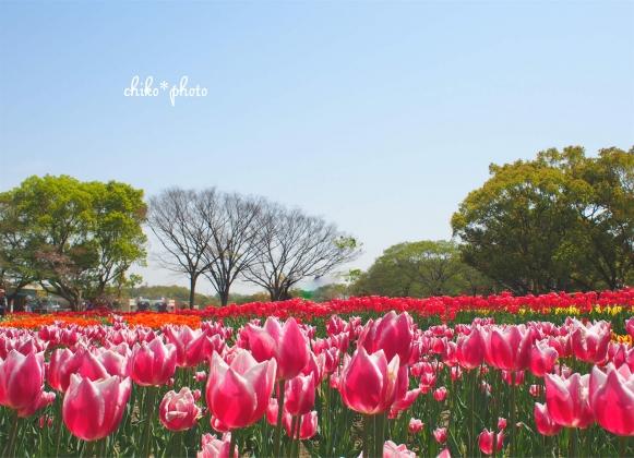 photo-640.jpg