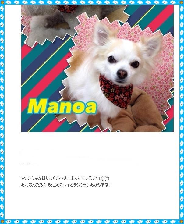 manoa3.jpg