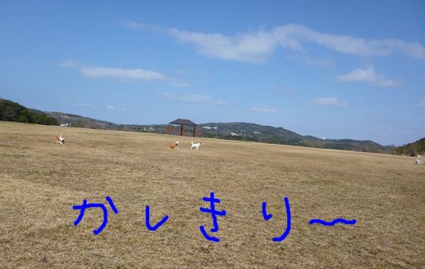 P1050179.jpg